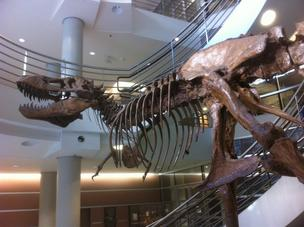 Paper timesheets are going extinct at UC Berkeley, like this Tyrannosaurus in the university's life sciences bulding.