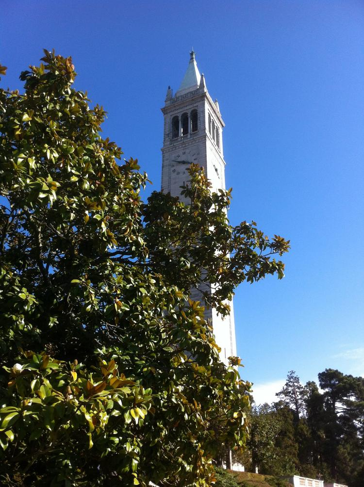 Ph.D. students at Cal are helping themselves look for jobs outside the towers of academia.