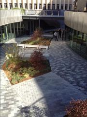 A view of the lower plaza at the University of San Francisco's Lo Schiavo Center for Science and Innovation.