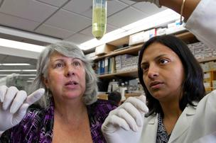 Thea Tlsty (left), a professor in the University of California, San Francisco's pathology department, is senior author of a paper outlining the discovery of a new type of stem cell. Somdutta Roy, a postdoctoral fellow, is the lead author.