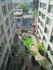 The building includes a courtyard and a private dog park for residents.