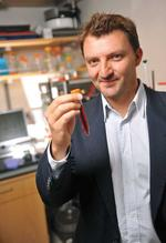 Omniox spreads its bets on oxygen-binding proteins