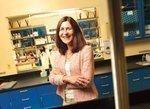 Peninsula biotech space feels global pharma blues
