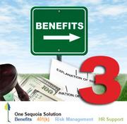 No. 3: Sequoia Benefits & Insurance Services LLC Number of Silicon Valley senior benefits consultants: 31 Number of FTE employees in the benefits division: 39 Consultant or administrator:  Consultant Sample of services:  Health & welfare, 401(k) Year founded:  2001 Top local executive: Greg Golub