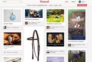 As with many other places on the Web, pictures of pets and cute animals are popular topics for Pinterest pinboards.