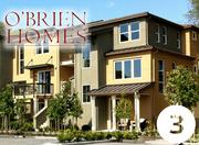 No. 3: O'Brien Homes