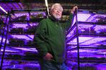 How Silicon Valley aims to turn greens to gold
