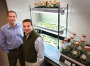 Energy winner: Biofuel maker Solazyme has been flying sky high in recent months. Last year, the designer fuel maker had a successful IPO in the industrial biotechnology sector, raising $228 million. Its President and CTO Harrison Dillon (left) and CEO Jonathan Wolfson are pictured here.