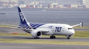 Japan's All Nippon Airways has grounded some of its Boeing 787 jets after problems were found in the Rolls Royce-made engines.