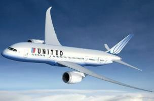 Dreamliner forced to land