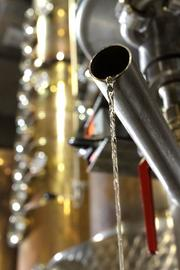 Fresh-from-the-still bourbon whiskey flows from the condenser at the Woodinville Whiskey Company.