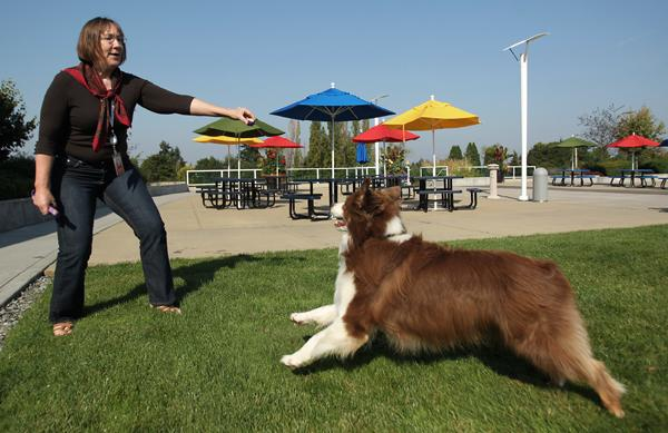 Google technical writer Jenelle Anderson takes a break from work outside with Levi, her coworker's dog, at Google's offices in Kirkland.
