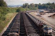 Coal and oil trains are lined up at the Everett freight yard, just west of Interstate 5, along the south bank of the Snohomish River.