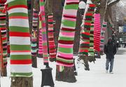 """Trees in Occidental Park in downtown Seattle and pedestrians alike were bundled up against the cold on Thursday. The trees have been """"yarn bombed"""" by artist Suzanne Tidwell as part of an art installation."""