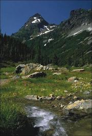3. Mount Baker-Snoqualmie National Forest had 5 million visitors in 2011.The Puget Sound Business Journal ranks the busiest destinations in  Washington state by 2011 visitor attendance. The full list of  the top 50 firms, compiled by Researcher Bonnie Graves, is available in  the Aug. 24 print edition.