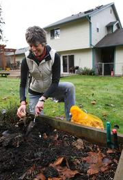 Marcia Rupert plants flower bulbs in her backyard in Fall City, Wash., showing her range of motion one year after she received a titanium and ceramic hip at Swedish Orthopedic Institute in Seattle.