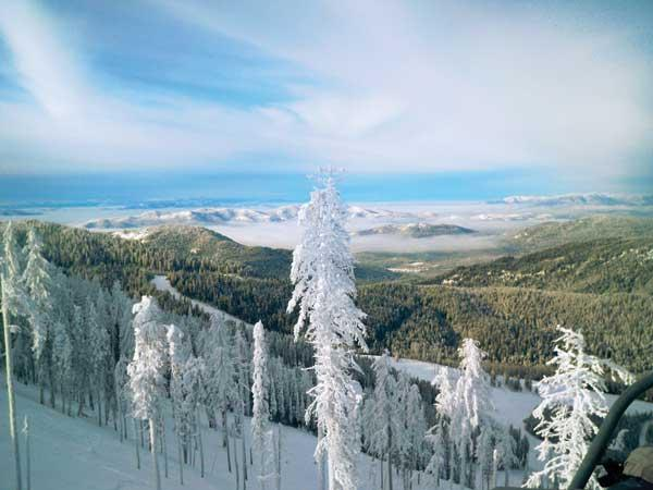 Ice-crusted trees convey a frosty look to the landscape at 49 Degrees North near Spokane, but the resort plans to move the ski lift uphill, where it's colder, to account for a warmer climate.
