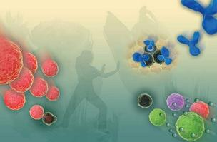 Antibodies (blue) target tumor cells in a photo illustration of immunotherapy, one of the treatment innovations that can face delays in getting to patients because of inefficient and cumbersome clinical trials. Seattle researchers are making attempts to s