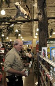 JUMPING IN: Cabela's outfitter Mark McAlvey restocks ammunition underneath a stuffed mountain lion at Cabela's new, 110,000-square-foot store in Quil Ceda Village.
