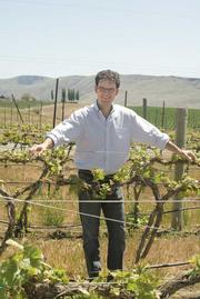 After a series of acquisitions, Precept Wine CEO Andrew Browne says his company is now focusing on its new properties.