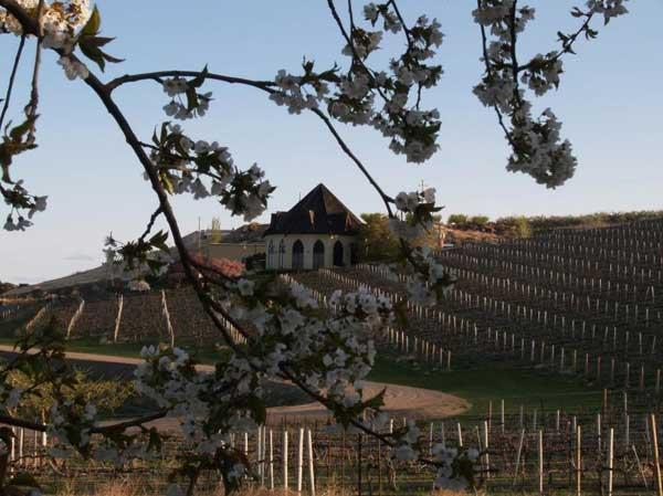 Seattle-based Precept Wines LLC in May acquired Ste. Chappelle Winery of Caldwell, Idaho, for an undisclosed price. Rather than signaling consolidation, the deal was an opportunity created by the winery's struggling former parent company, industry observers say.