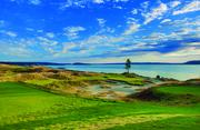 1. (tie) Chambers Bay in University Place was rated 76.4 according  to the Men's USGA course rating and 71.0 according to the Women's USGA  course rating.