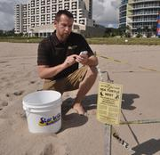 Justin Gould,  VP board of directors for Sea Turtle Oversight Protection (STOP) on Fort Lauderdale Beach checking the map of nest locations.
