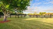 The estate's paddocks, which are fenced outdoor areas for horses.