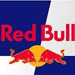 New <strong>Jeremy</strong> <strong>Alters</strong> firm lawsuit: Red Bull doesn't give you wings