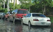 Cars parked along flooded West Avenue on Miami Beach.