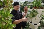Isle Casino revamps buffet, plants garden - slideshow