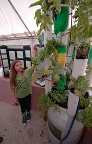 Emma Bennett of Sunset Elementary showing her Hydro-Fin. It uses fish below to provide waste pumped up through the plants.