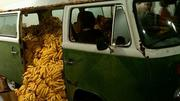 Bananas flow out of a truck at Art Basel Miami Beach in 2011.