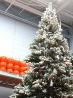 Holiday retail sales come earlier to South Florida