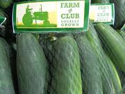 Cucumbers fresh off the farm are being sold through BJ's Farm to Club program.