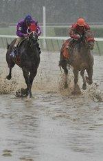 Hialeah Park races ahead