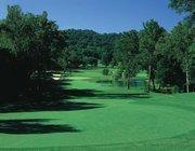 1. Fox Run Golf Club 1 Putt Lane, Eureka, Mo. 63025 (636) 938-4444 | www.foxrungolfclub.com USGA course rating: 78.8 Length of course from back tee (yards): 8,154