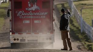 A screen shot of Budweiser's Super Bowl ad featuring its newest Clydesdale.