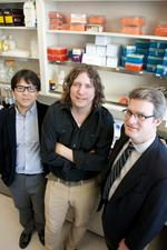 Three Washington University scientists share $6.2 million in grants for biotech research