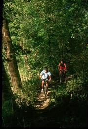 Greensfelder features trails, horse boarding, equestrian and group camping. The 1,646 acres were donated to St. Louis County in 1963 by the trustees of the St. Louis Regional Planning and Construction Foundation.