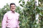 Cooler temperatures sweeten yield for Missouri wineries