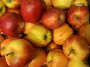 5. There was a decrease in apple production, with apples sliding from 33 million pounds of apples in 2010 to 17 million pounds this year.