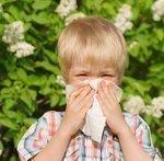 Cincinnati researchers: Diesel fumes contribute to asthma risk