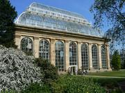 The Victorian Temperate Palm House at the Royal Botanic Garden Edinburgh, one of the organizations involved in creating the World Flora.