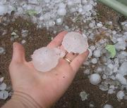 Hail stones form in intense thunderstorms that have strong updrafts.