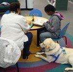 Support Dogs raises $2 million in $3.5 million capital drive