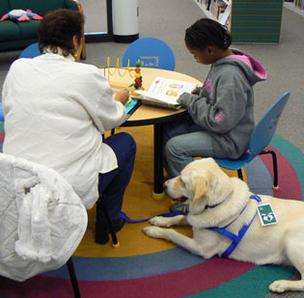 Support Dogs Inc. is a national non-profit organization that provides services including a service dog program called Paws for Reading, which places dogs in school classrooms.