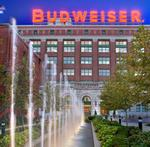 Anheuser-Busch InBev searching for new U.S. ad shop