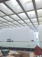 McCarthy sculpts ceiling for art museum expansion