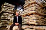 Ronnoco Coffee to launch single-serve K-Cup